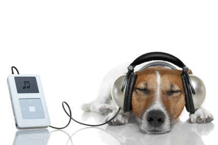 We can help you find free music.