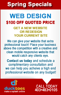 banner describing $100 off web design usemap=